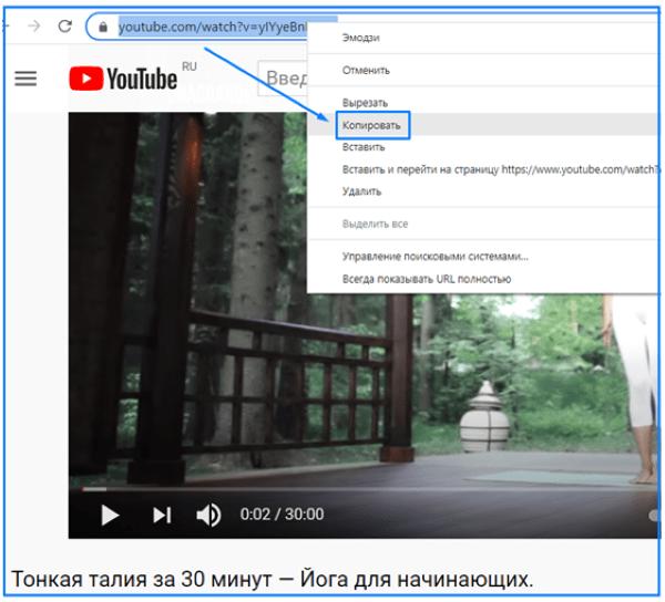скачать видео с SateFrom.net